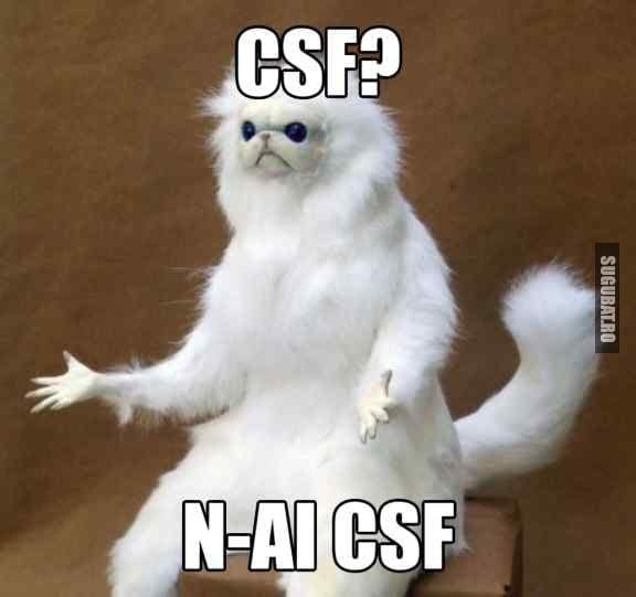Cele mai bune calorifere NCSF