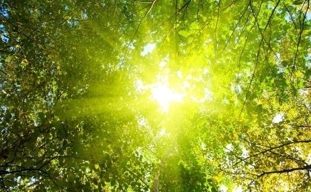case eficiente energetic soare vara